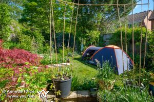 Garden Camping. A delightful way to spend time at home