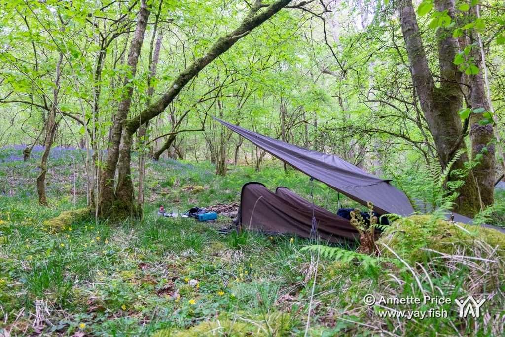 Elidir Trail Ystradfellte Wales May 2019 24