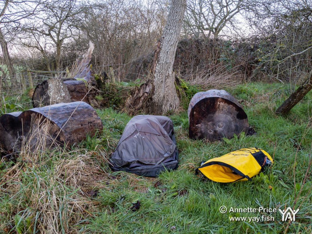 There were sounds of snoring coming from this bivvi bag (middle 'log'). Wild camping course at the Yes Bus. Part of Say Yes More. West Sussex, UK.